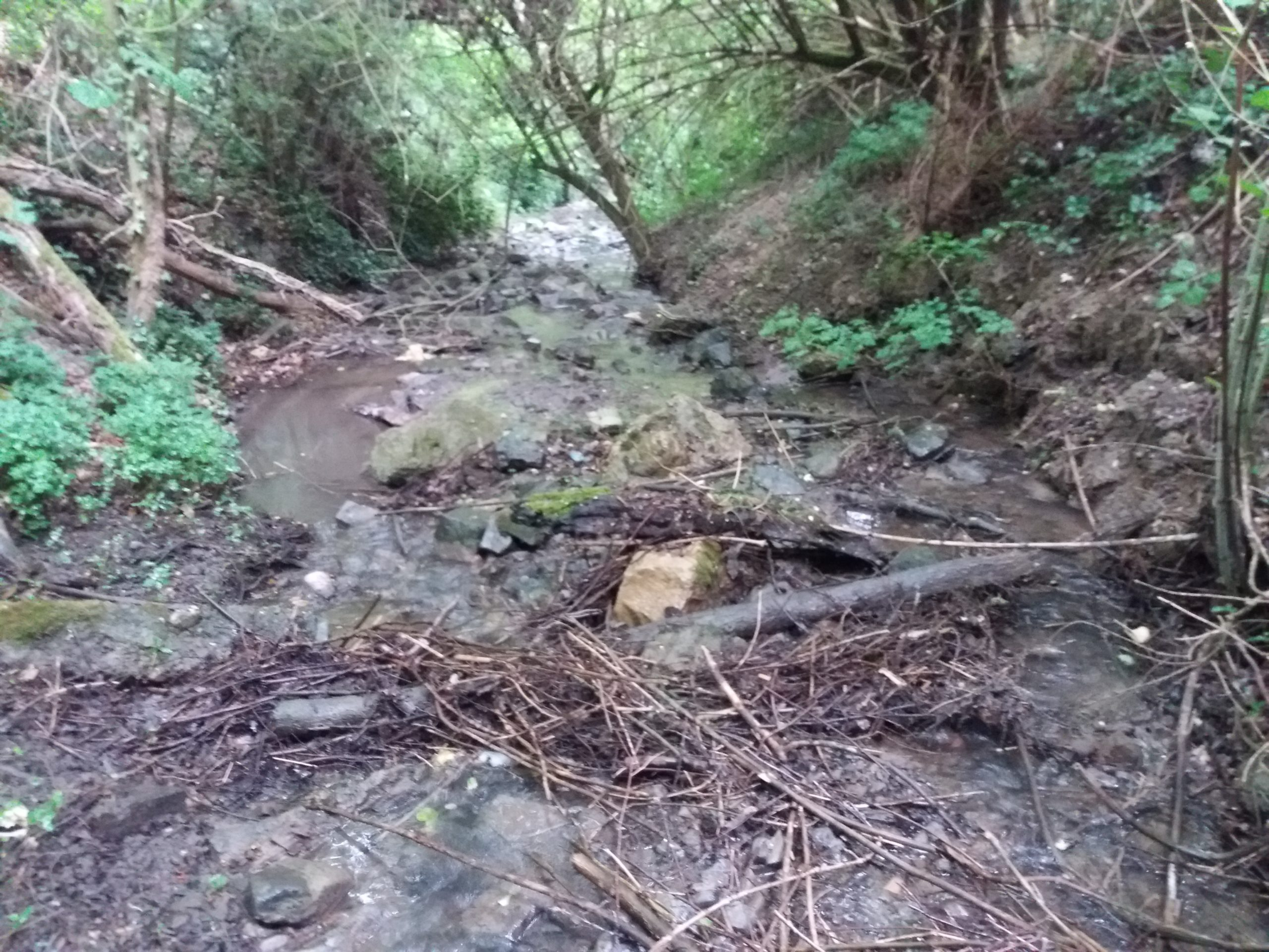 Der Naturschutz wird mit Steinen getreten und der Hochwasserschutz vernachlässigt!